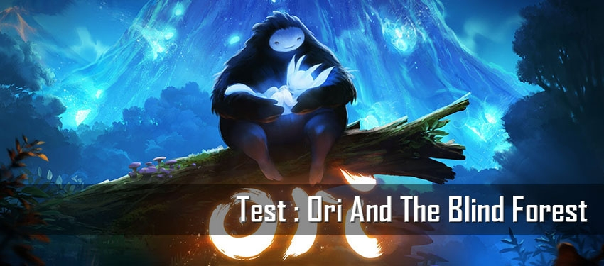 Test : Ori And The Blind Forest