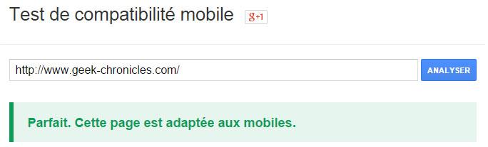 Le blog est Google Mobile Friendly !